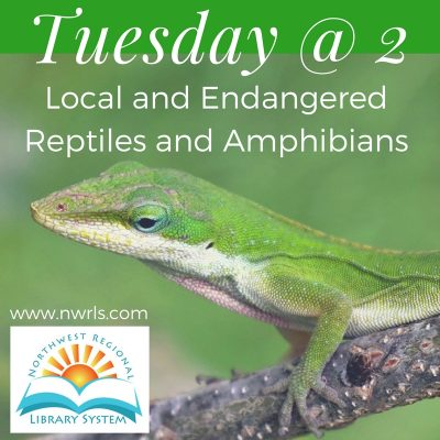 Tuesday at 2: Local and Endangered Reptiles and Amphibians