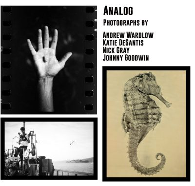 Analog: Photographs by Andrew Wardlow, Katie DeSan...