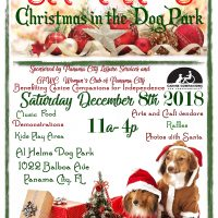 Santa Paws Christmas in the Dog Park