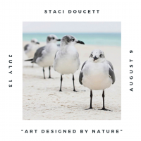 Art Designed by Nature - Staci Doucett Photography Exhibition